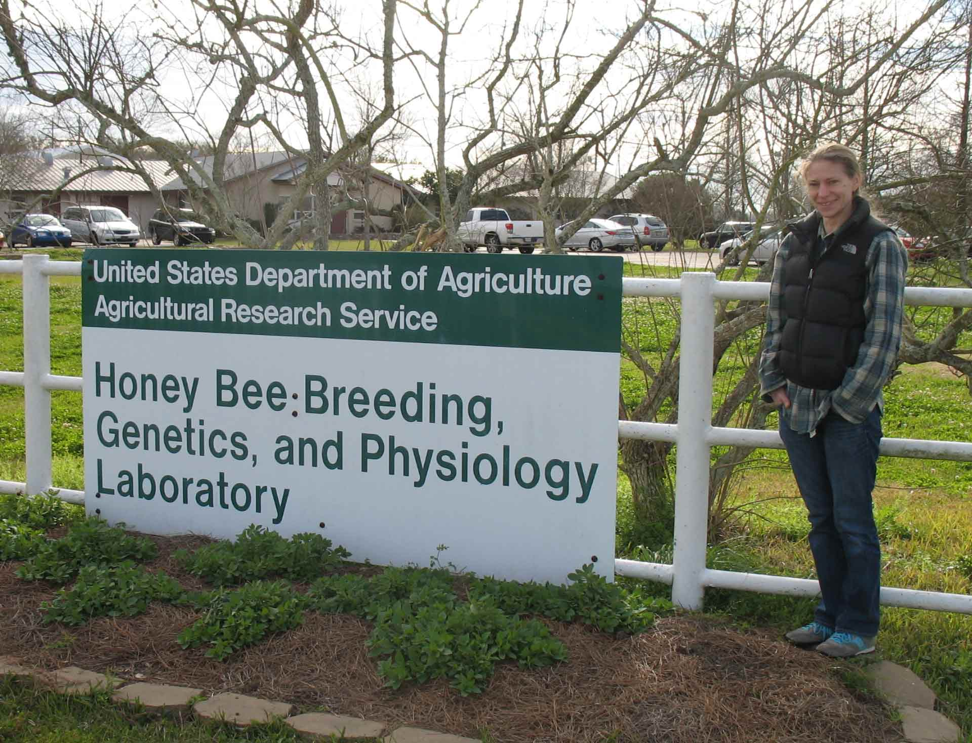 Kelly at the USDA Bee Lab, Baton Rouge who we work with in breeding bees